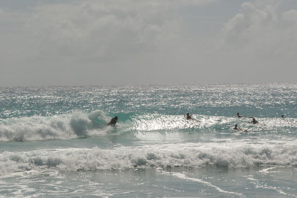 surfkurs-barbados-1