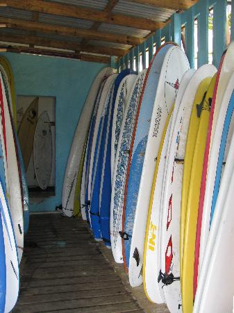 Liquid Surf X Surfers 8